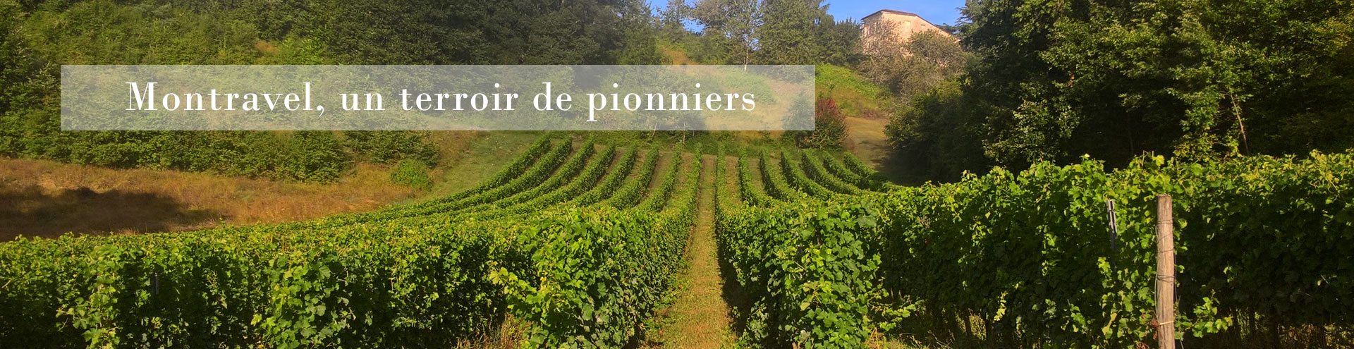 Vignoble Montravel